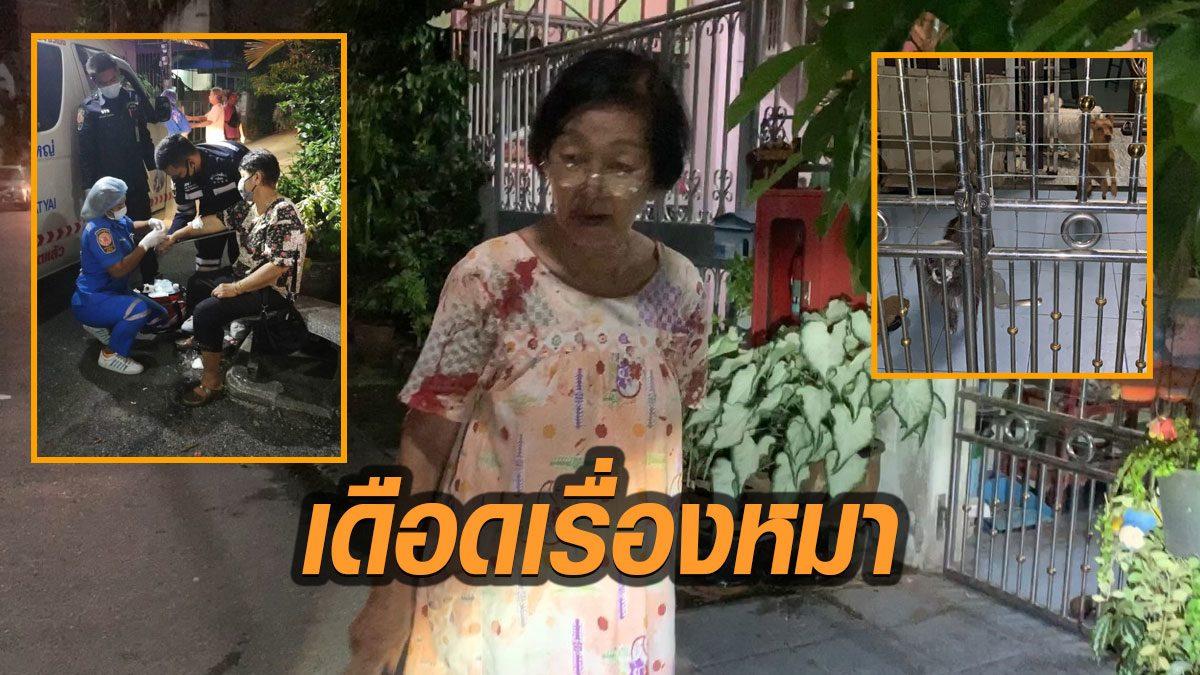 ยายวัย 81 ใช้มีดแทงสวนเพื่อนบ้านเลือดพุ่ง หลังทะเลาะเรื่องหมา แล้วถูกรุมตบต่อย