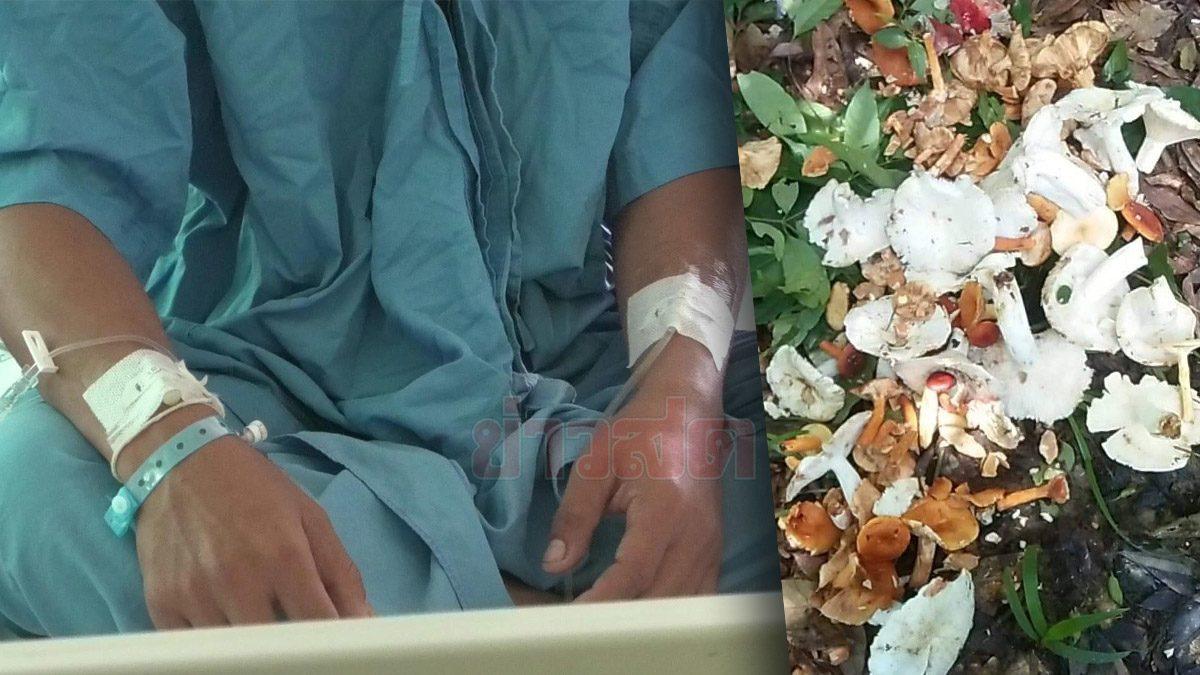 4 ชาวบ้านเกือบตาย กินเห็ดพิษย่าง เผยเห็ดต้นตอ ทำให้มองไม่เห็น-ถึงตาย