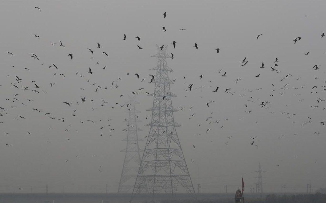 'มลพิษทางอากาศ' ทำคนทั่วโลกอายุเฉลี่ยสั้นลงเกือบ 2 ปี