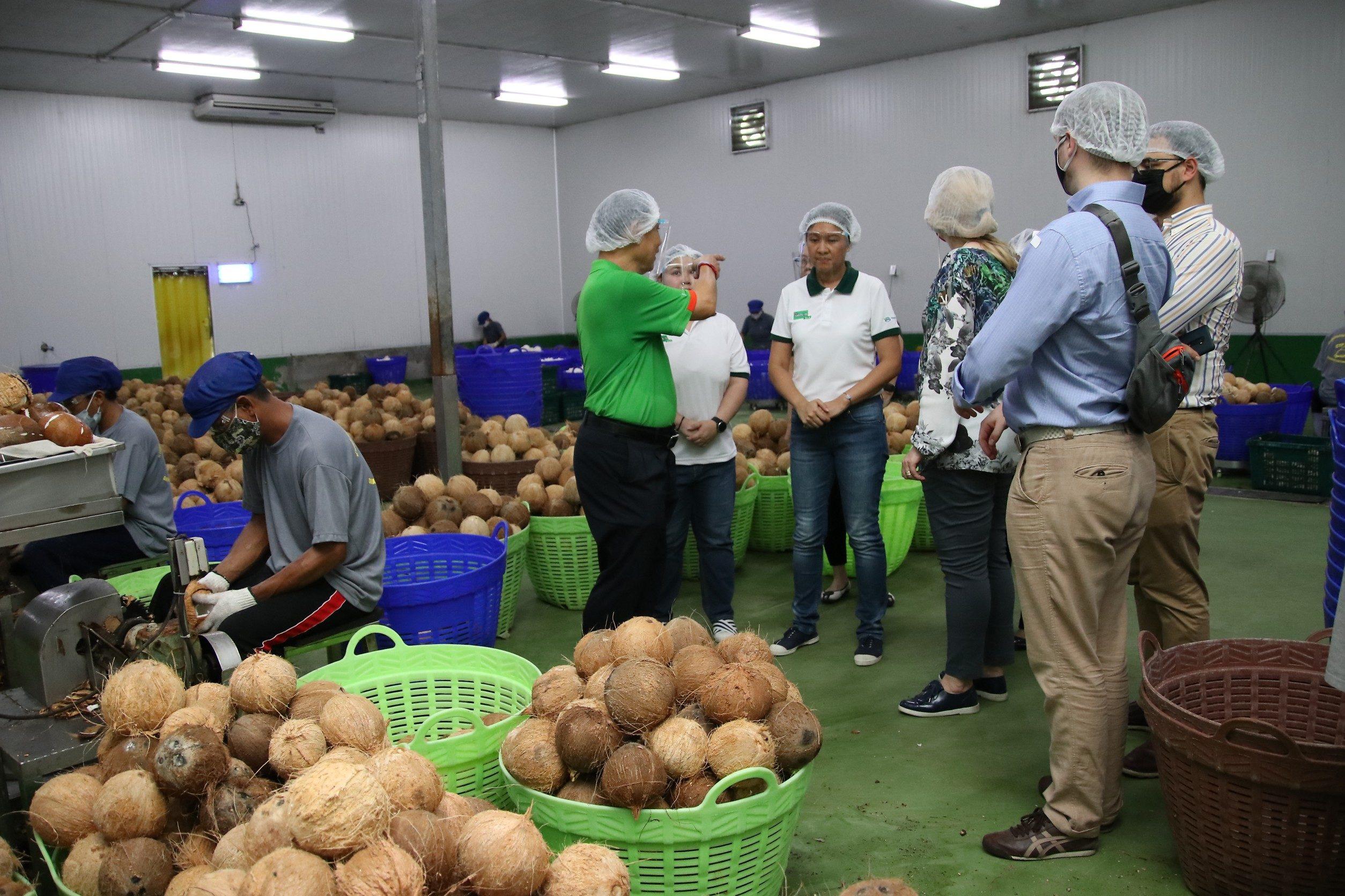 นำคณะทูตลงพื้นที่ สำรวจกระบวนการผลิต อุตสาหกรรมแปรรูปมะพร้าวไทย