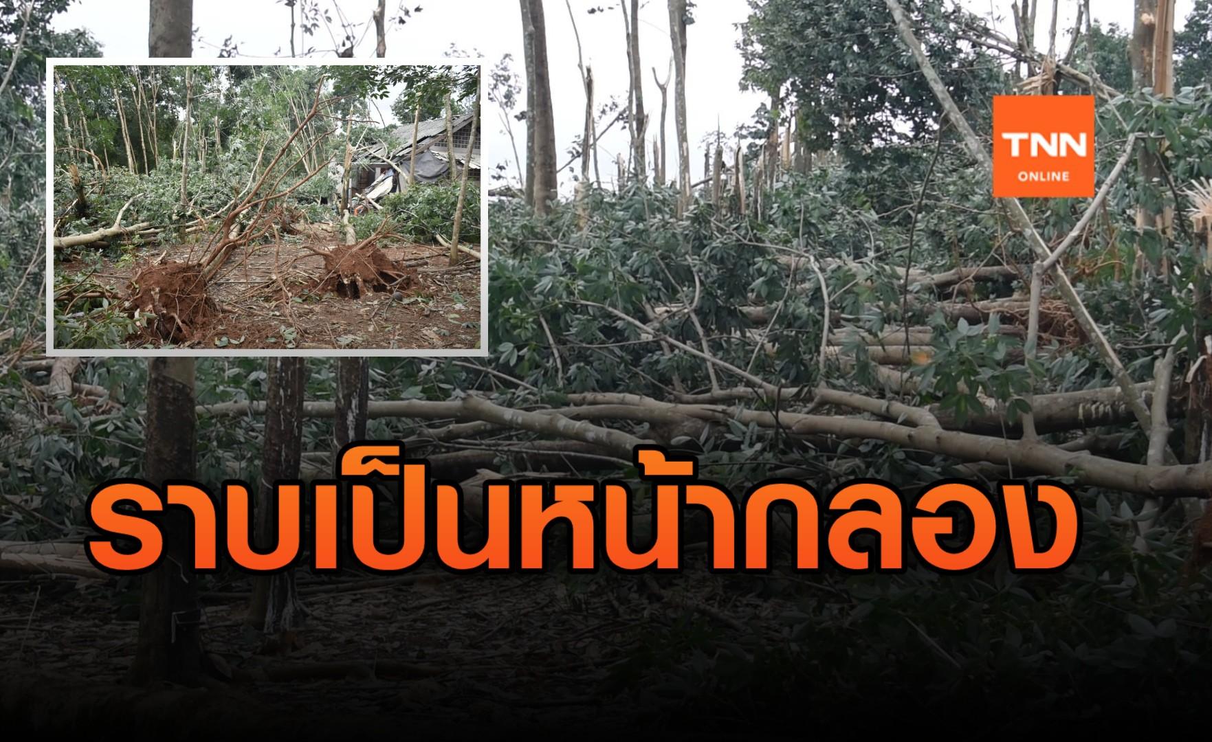 ตราดอ่วม!! พายุพัดถล่ม สวนยางพารา หักโค่นเสียหายหนัก