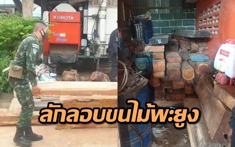 มีอีกเยอะ! บุกจับไม้พะยูงจำนวนมาก ซุกบ้านในอ.ตาพระยา เตรียมส่งออกกัมพูชา