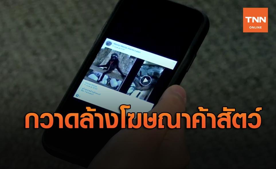 เฟซบุ๊กล้างโฆษณาค้าสัตว์ป่าในเอเชียตะวันออกเฉียงใต้ หลังขายออนไลน์เพียบ