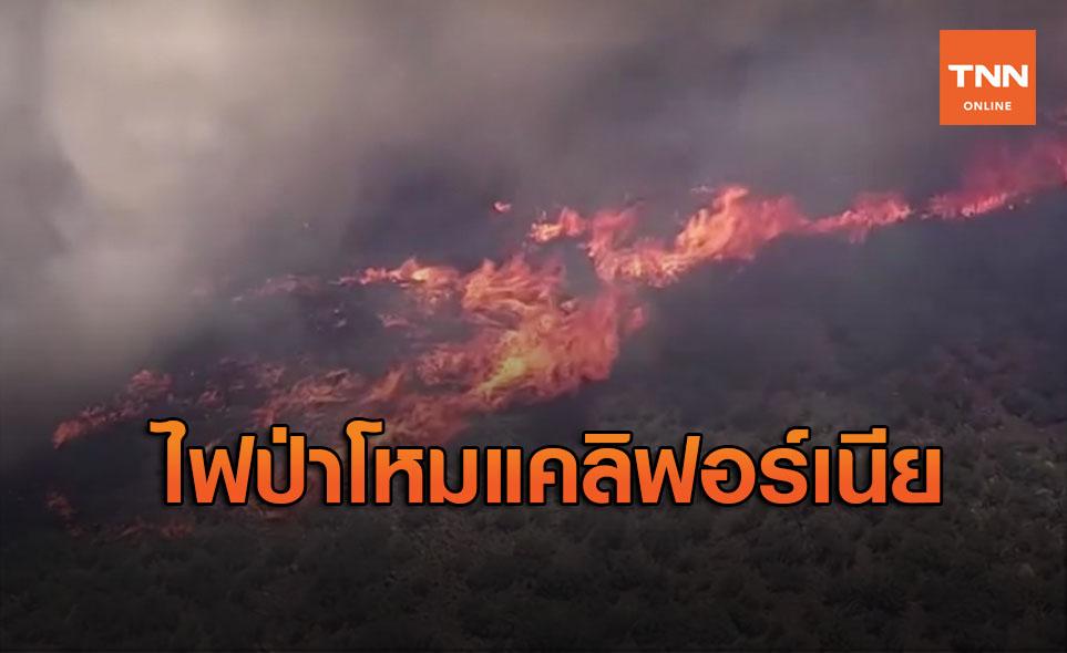 ฟ้าผ่าหมื่นครั้ง! แคลิฟอร์เนียประกาศภาวะฉุกเฉินไฟป่าเกือบ 400 จุด
