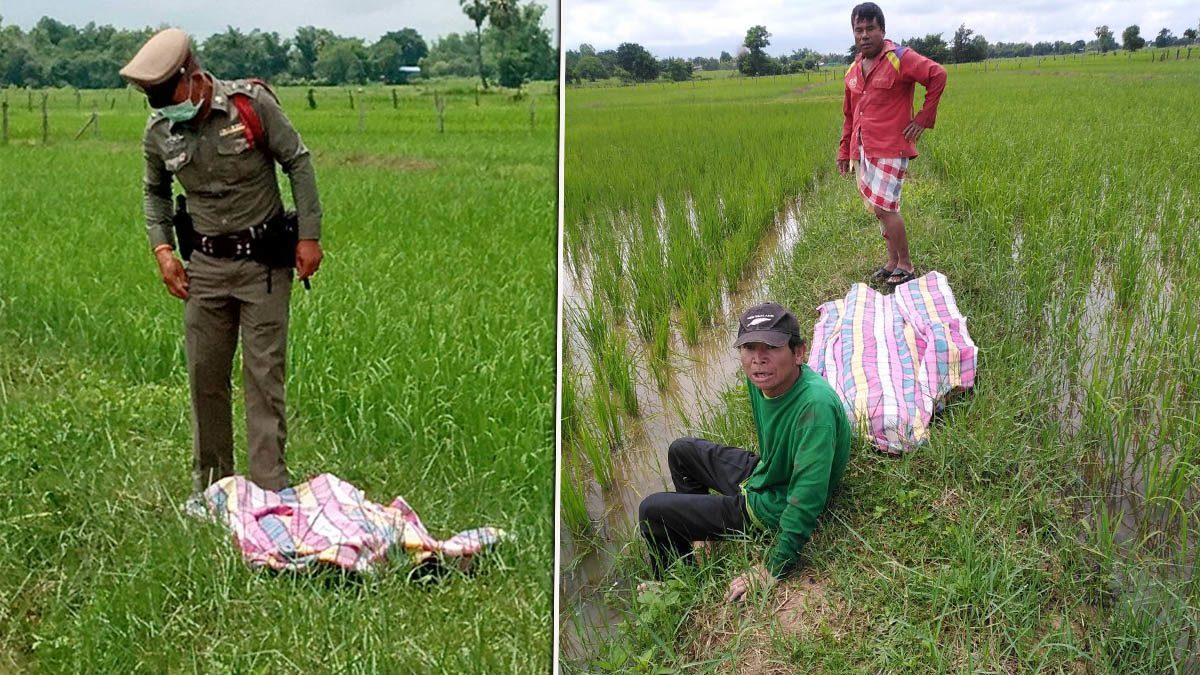หนุ่มใหญ่ซดหมดกั๊ก ก่อนไปถอนหญ้าในนา เจอแดดวูบจมน้ำ ดับคานา