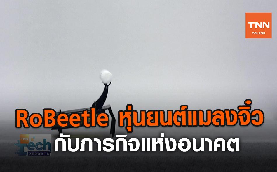 RoBeetle หุ่นยนต์แมลงจิ๋ว กับภารกิจแห่งอนาคต | TNN Tech Reports | 26 ส.ค. 63 (คลิป)