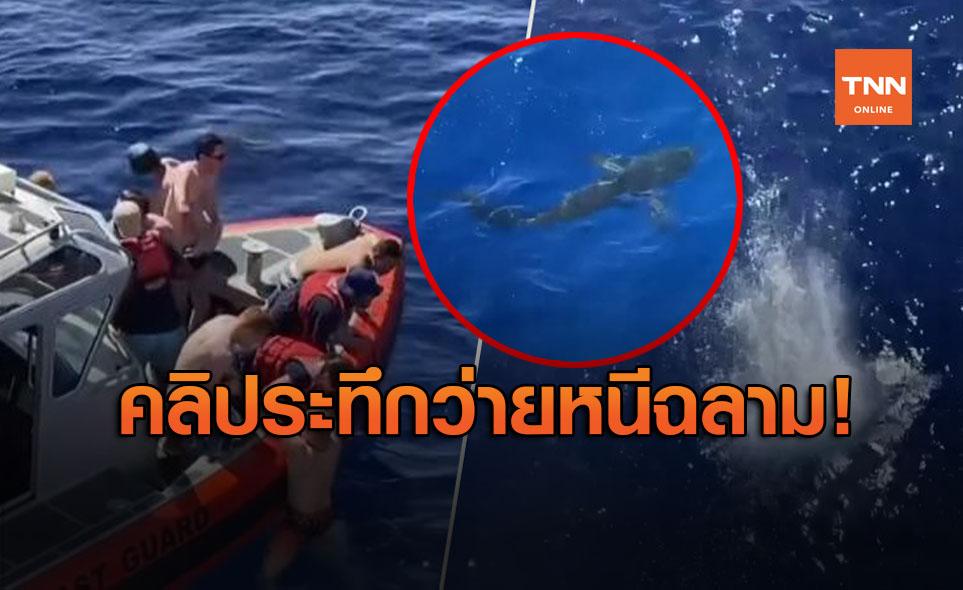 ยิงสกัดฉลามบุกจู่โจมหน่วยยามฝั่งสหรัฐ 40 คนว่ายหนีระทึก (คลิป)
