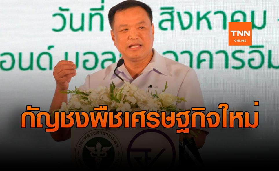 """อนุทิน ผลักดัน """"กัญชง"""" เป็นพืชเศรษฐกิจใหม่ สร้างรายได้ให้คนไทย"""
