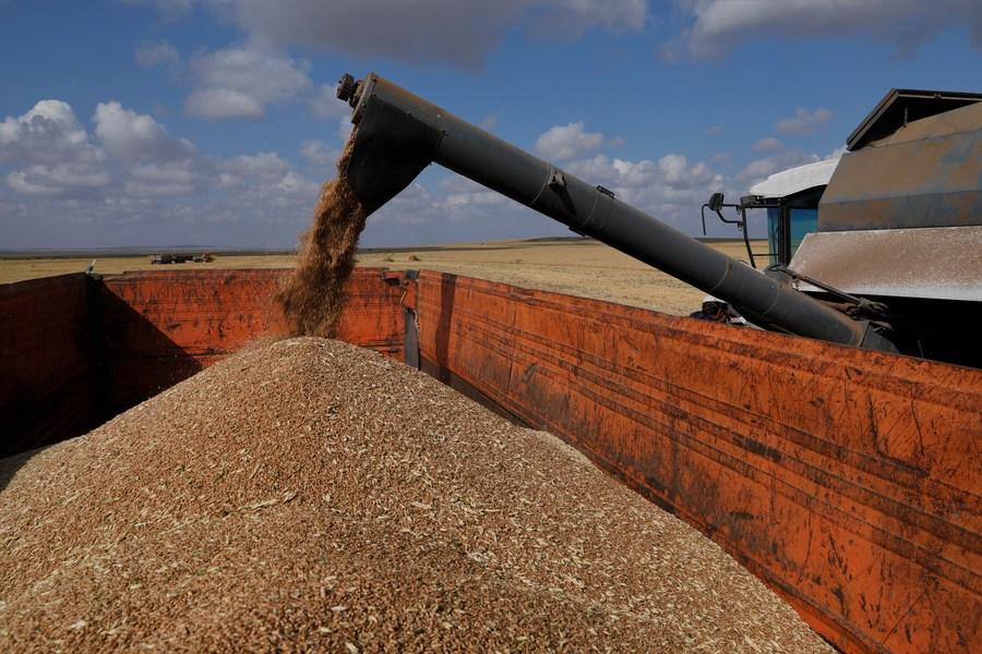 'คาซัคสถาน' ส่งออกสินค้าเกษตรไปจีน โต 15% ในครึ่งปีแรก