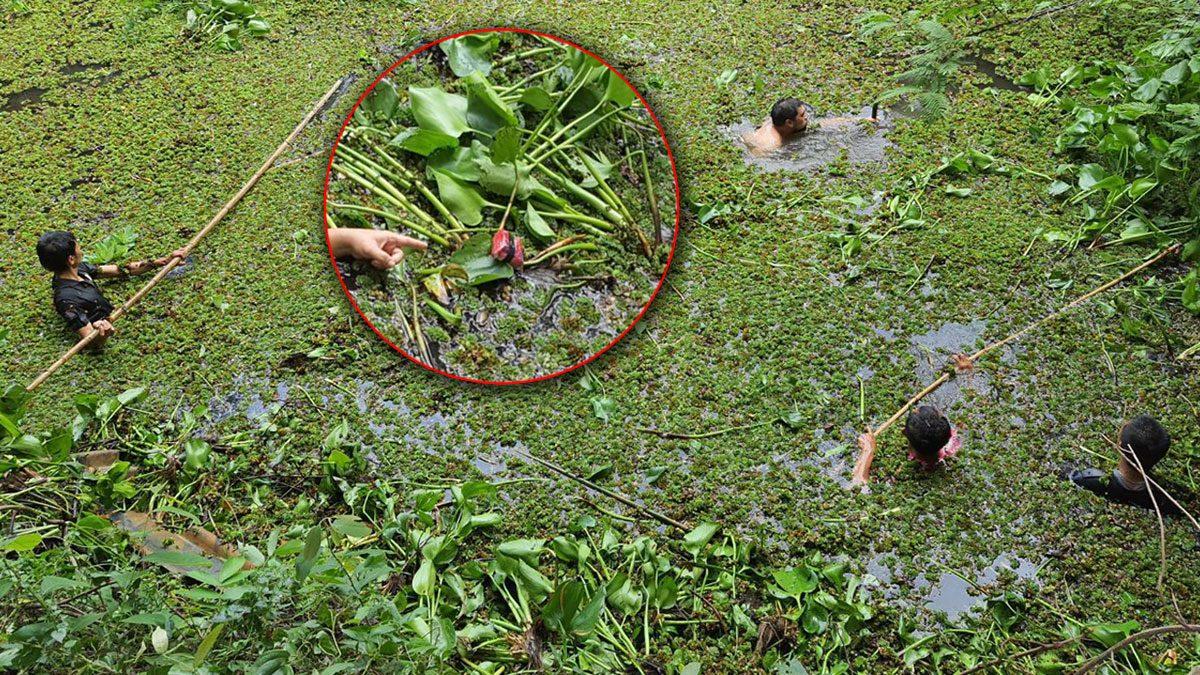 หาของกลางกันวุ่น หนุ่มโดนไล่จับ โดดลงน้ำ เอายาบ้า ซ่อนไว้ในรากผักตบชวา