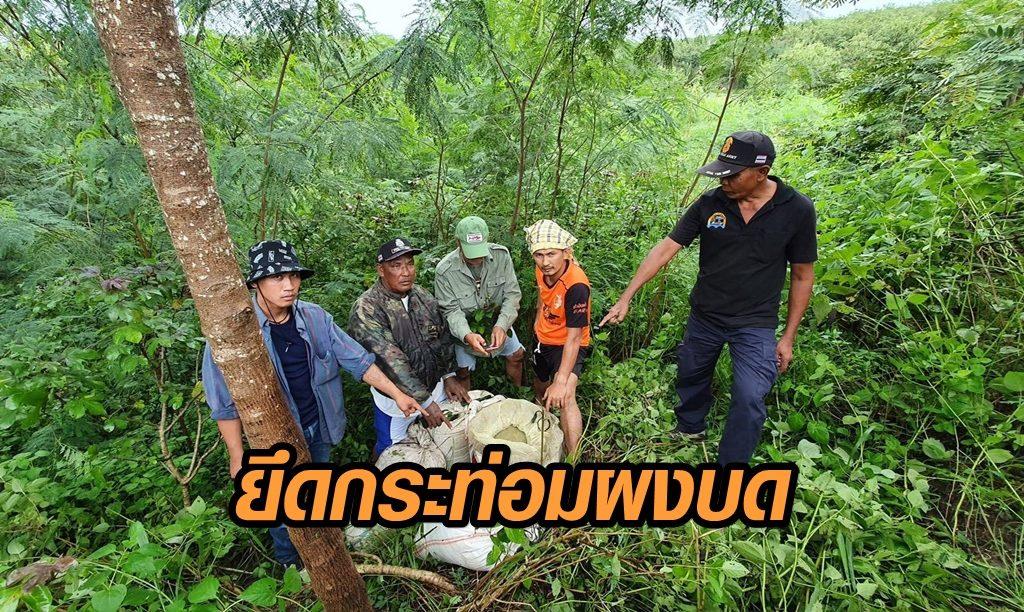ตรวจยึดกระท่อมผงบด 105 กก. คาดต่างด้าวลอบขน รอขายต่อในไทย หลังราคาพุ่ง 100 เปอร์เซ็นต์