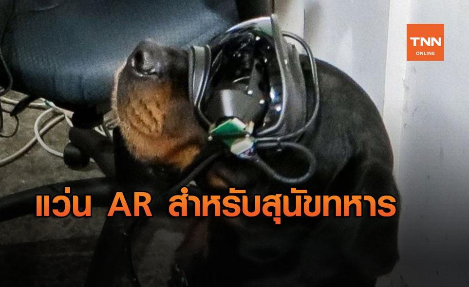 กองทัพสหรัฐฯ คิดค้นแว่น AR สำหรับสุนัขทหาร เพื่อสั่งการค้นหาระเบิดจากระยะไกล