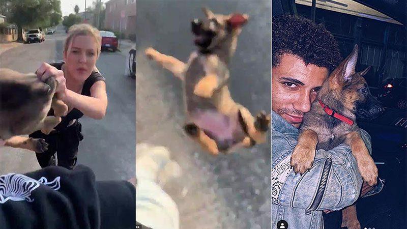 หญิงมะกันเหยียดเชื้อชาติ โยนลูกหมาใส่หนุ่มคนดำ แถมยัดข้อหาขโมย