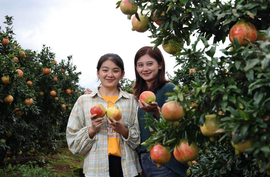 'มือถือ' 'อีคอมเมิร์ซ' เครื่องมือสำคัญของ 'ชาวบ้านในชนบทจีน'