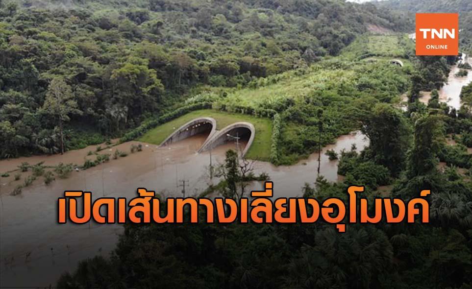 ทล.เปิดเส้นทางเลี่ยง อุโมงค์เชื่อมผืนป่าทับลาน เผยระดับน้ำท่วมสูงเกือบ 2 ม.