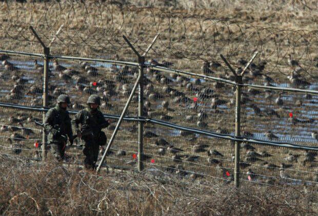 เกาหลีใต้รวบชายชาวเกาหลีเหนือ หนีข้ามแดน คาดแปรพักตร์