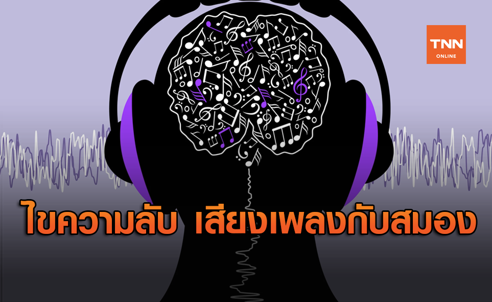 เสียงเพลงกับสมอง ความสัมพันธ์ตั้งแต่โบราณกาลของมวลมนุษยชาติ