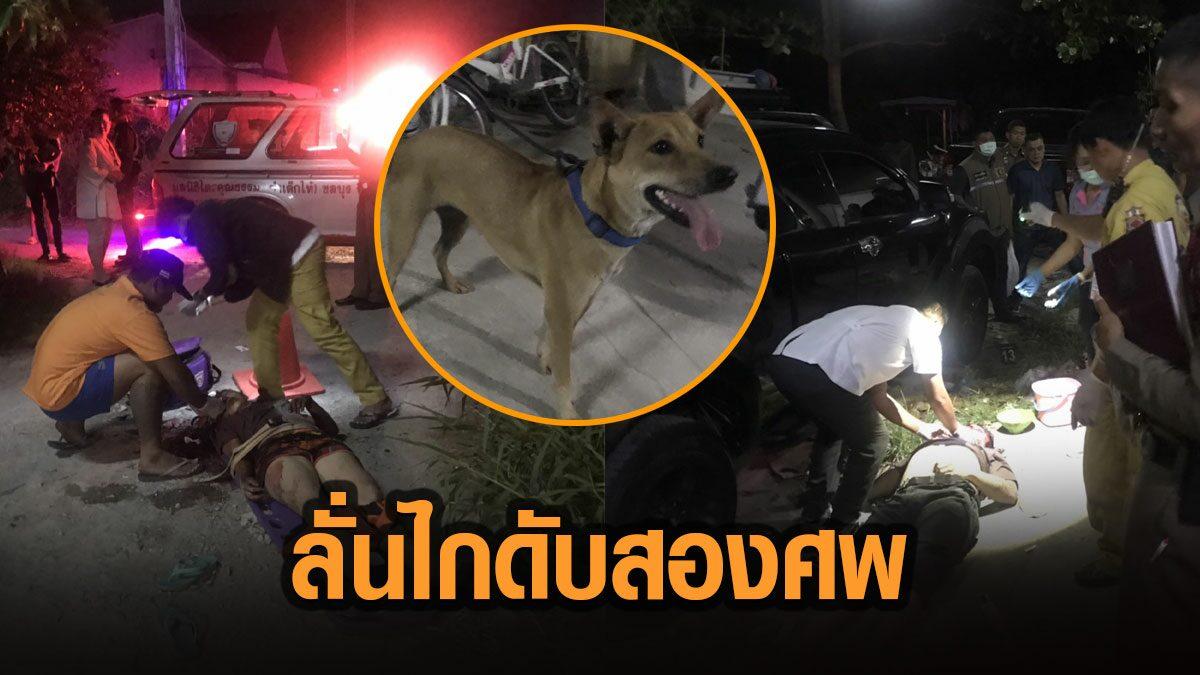 หมาเห่าไม่หยุด ลามทะเลาะกันรุนแรง เพื่อนบ้านคว้าปืนไล่ยิง เหนี่ยวไม่ยั้งดับ 2 ศพ
