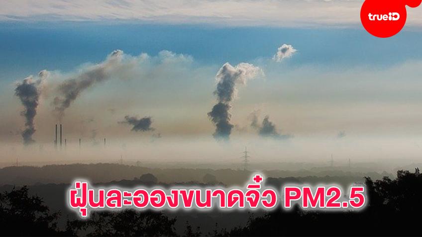 ทำความรู้จัก ฝุ่นละอองขนาดจิ๋ว PM2.5
