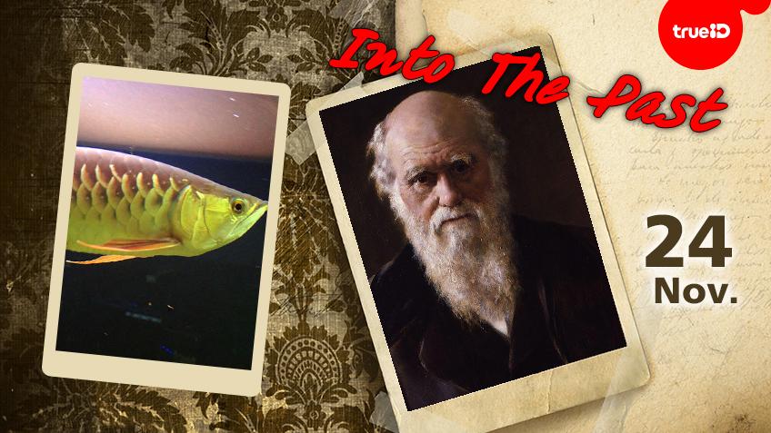 Into the past : ศูนย์พัฒนาประมงน้ำจืดสุราษฎร์ธานี เพาะพันธุ์ปลาตะพัดได้สำเร็จเป็นครั้งแรกในประเทศไทย , หนังสือ The Origin of Species โดยชาลส์ ดาร์วิน นักธรรมชาติวิทยาชาวอังกฤษ วางจำหน่าย (24พ.ย.)