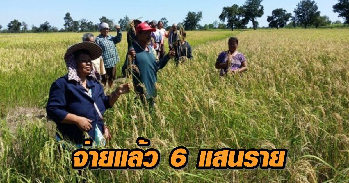 ธ.ก.ส. จ่ายเงินประกันรายได้เกษตรกรผู้ปลูกข้าว รอบ 2 แล้ววันนี้กว่า 6 แสนราย