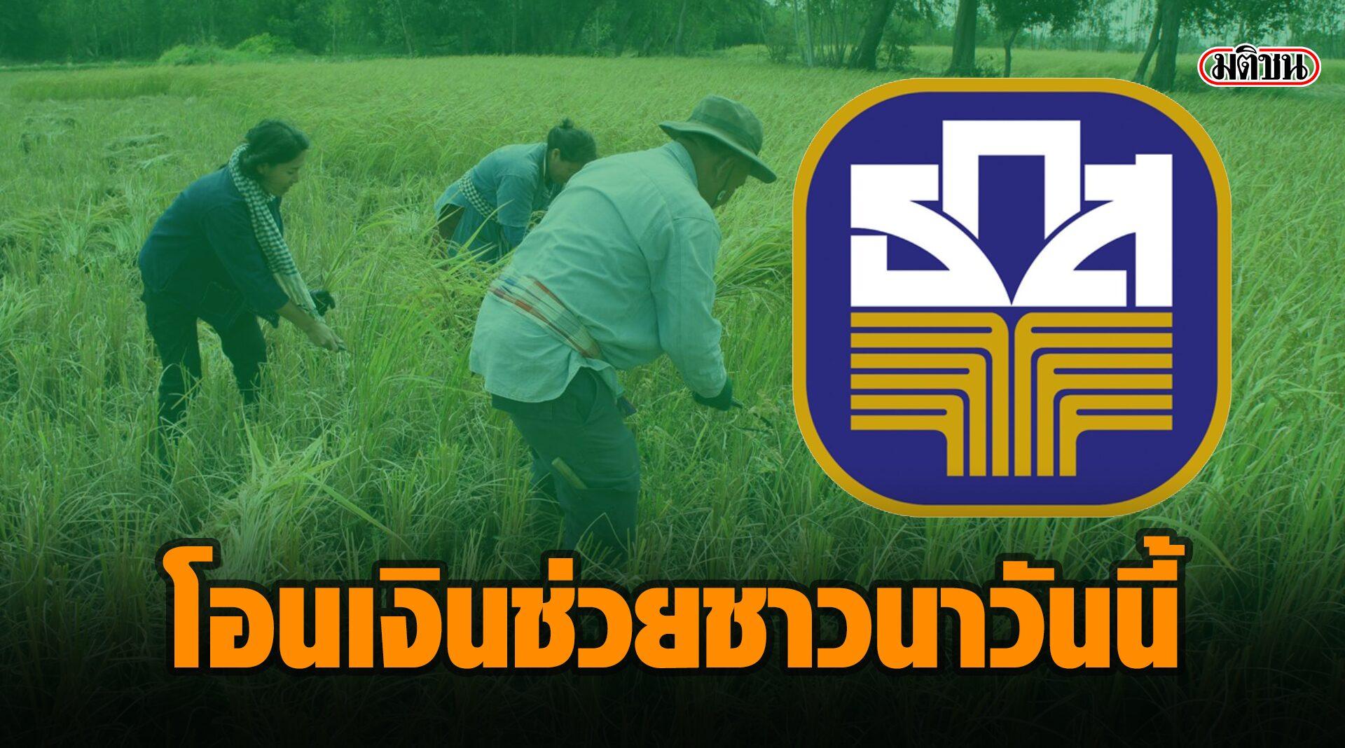 เริ่มแล้ว! 'ธ.ก.ส.' โอนเงินช่วยชาวนาไร่ละ 500 บาท หวังผยุงเกษตรกร 4.56 ล้านราย