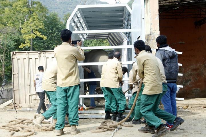'ช้างที่โดดเดี่ยวที่สุดในโลก' ในปากีสถานเตรียมย้ายบ้านใหม่ไปกัมพูชา
