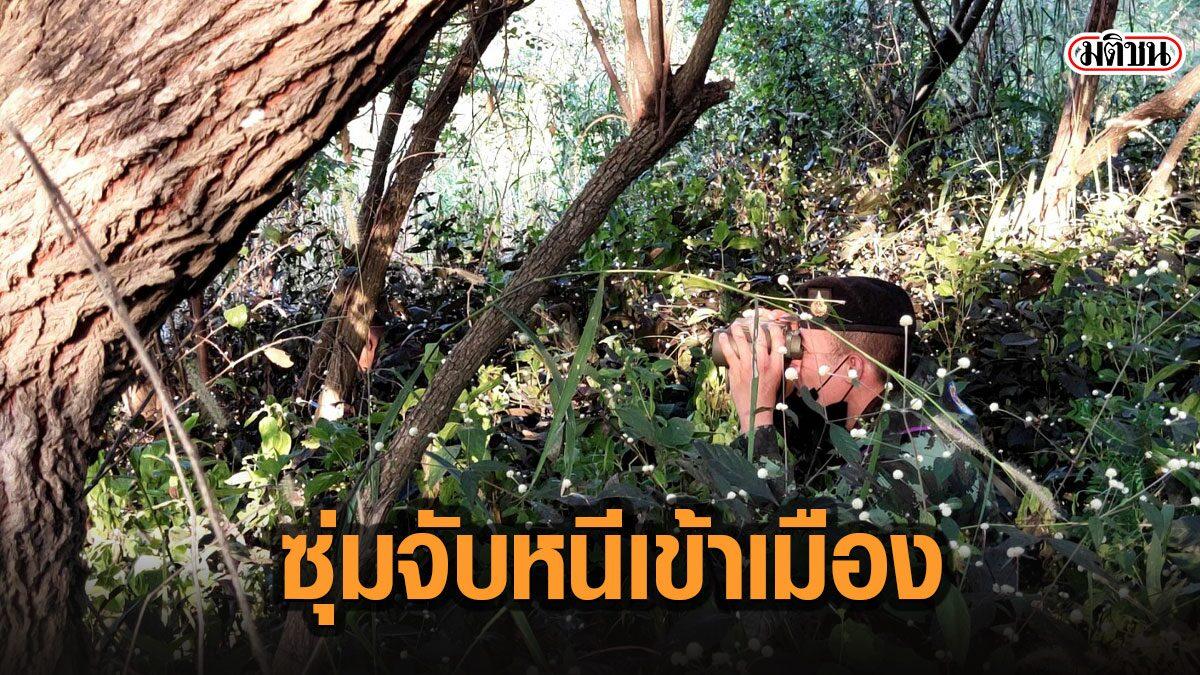 ทหารไทยเปลี่ยนยุทธวิธี หันซุ่มในป่า ใช้กล้องส่องทางไกล จับคนลอบเข้าเมืองได้ต่อเนื่อง