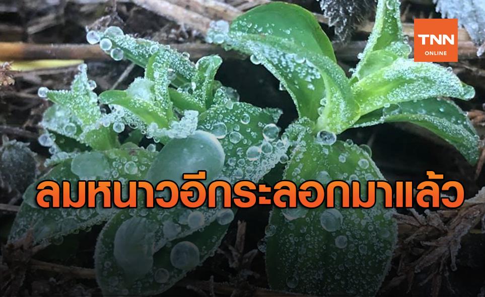 ลมหนาวมาแล้ว! 21-23 ธ.ค. นี้ อากาศเย็นปกคลุมไทยอีกระลอก