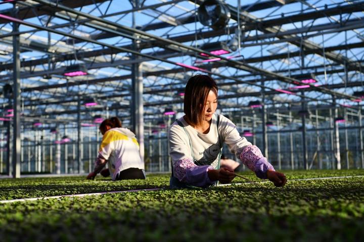 'อำเภอ' ทั่วจีนพัฒนา 'อุตสาหกรรม' บรรเทาความยากจน