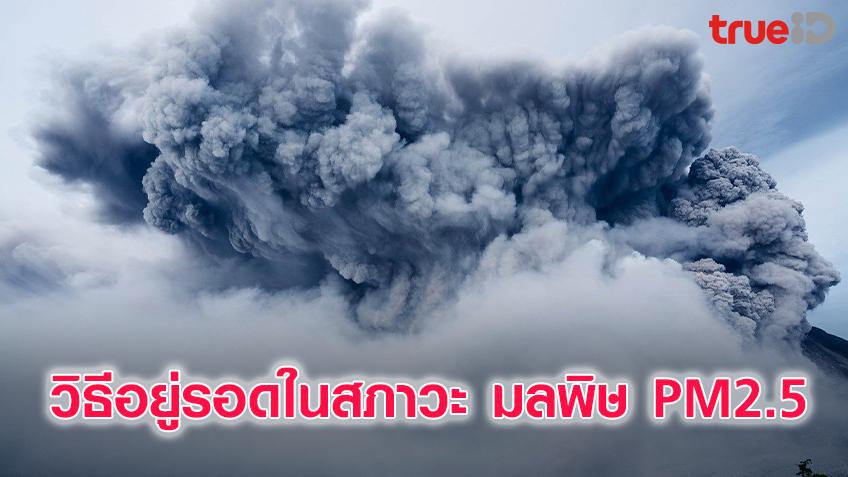 วิธีอยู่รอดในสภาวะ มลพิษ PM2.5