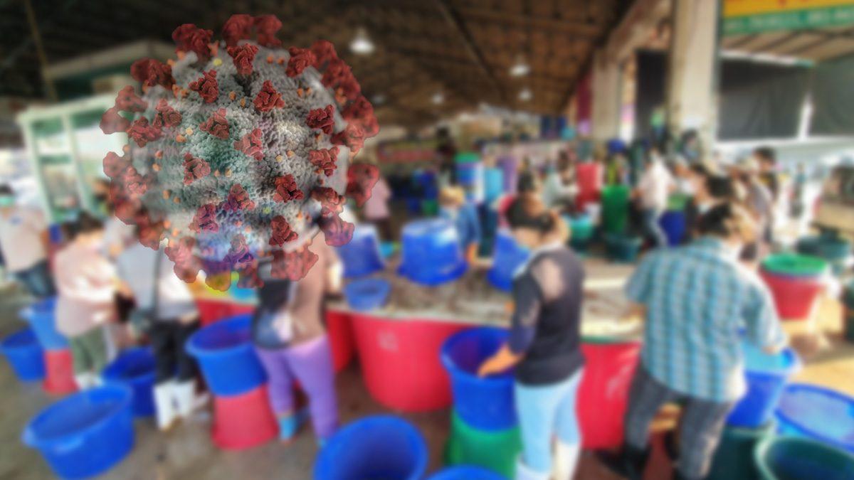 ด่วน! หญิงสูงอายุติดโควิด พักย่านประชาชื่น สอบพบไปซื้ออาหารทะเลที่มหาชัยมาขาย