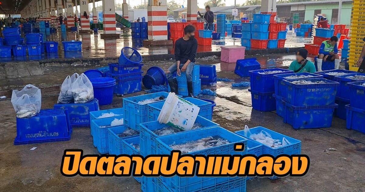 ประมงแม่กลองถกด่วน ผู้ว่าฯเห็นชอบ ปิดตลาดปลาแม่กลอง 14 วัน ป้องกันโควิด-19
