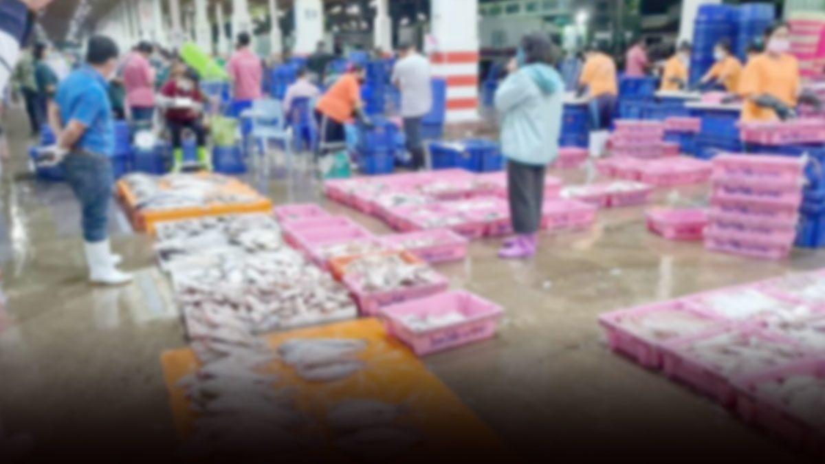 ประกาศปิดตลาดปลาแม่กลอง ตั้งแต่พรุ่งนี้เป็นเวลา 14 วัน หลังสมุทรสงครามพบติดเชื้อ