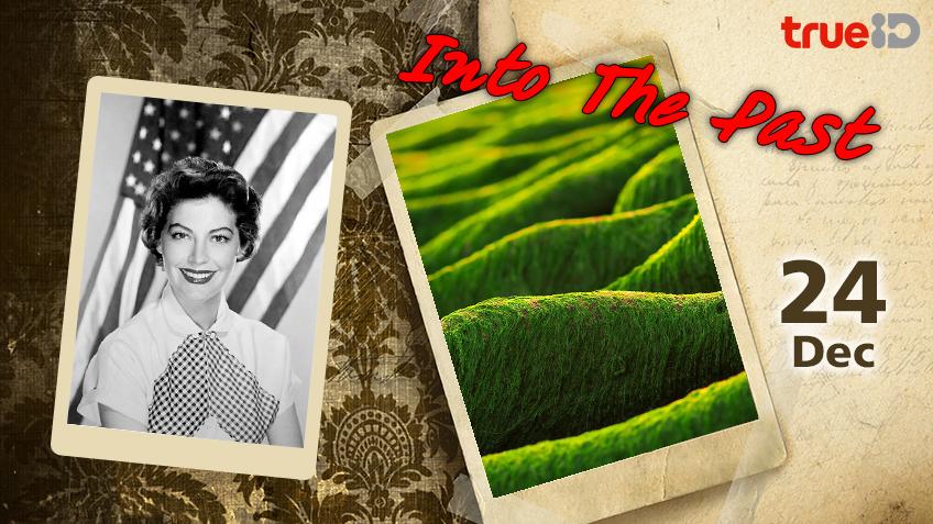 Into the past : มหาวิทยาลัยเชียงใหม่ค้นพบได้แล้วว่า สาหร่ายขนาดเล็กสามารถนำมาทำเป็นน้ำมันไบโอดีเซล , วันเกิด เอวา การ์ดเนอร์ นักแสดงชาวอเมริกัน (24ธ.ค.)