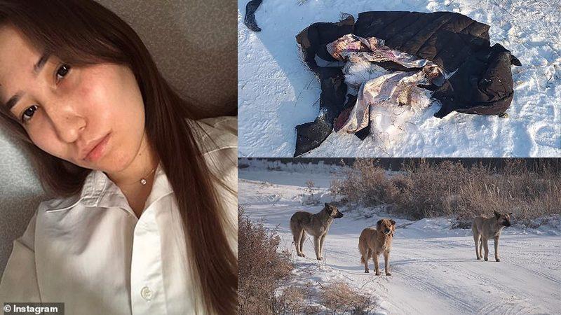 สาวรัสเซียโคม่า สุนัขป่า10ตัวรุมขย้ำหน้าเหวอะ-ฉีกเสื้อผ้าขาด อากาศ -22 องศา
