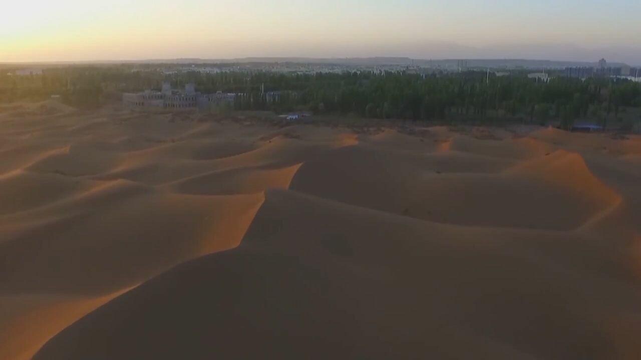 'พุทรา' ในทะเลทรายยักษ์ ช่วยชาวบ้านซินเจียง 'เลิกจน'
