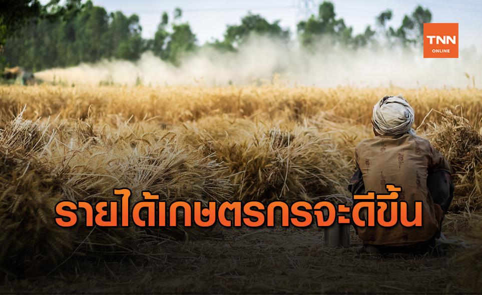 ศูนย์วิจัยกสิกรไทย คาดรายได้เกษตรกรปี 64 ดีขึ้น