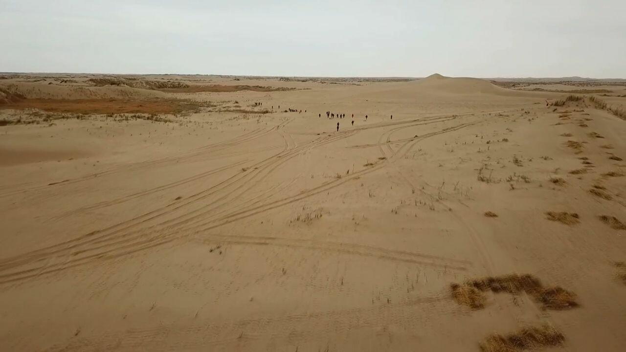 จีนลุยปลูก 'ข้าวกลางทะเลทราย' ชี้ยิงปืนนัดเดียวได้นกสองตัว