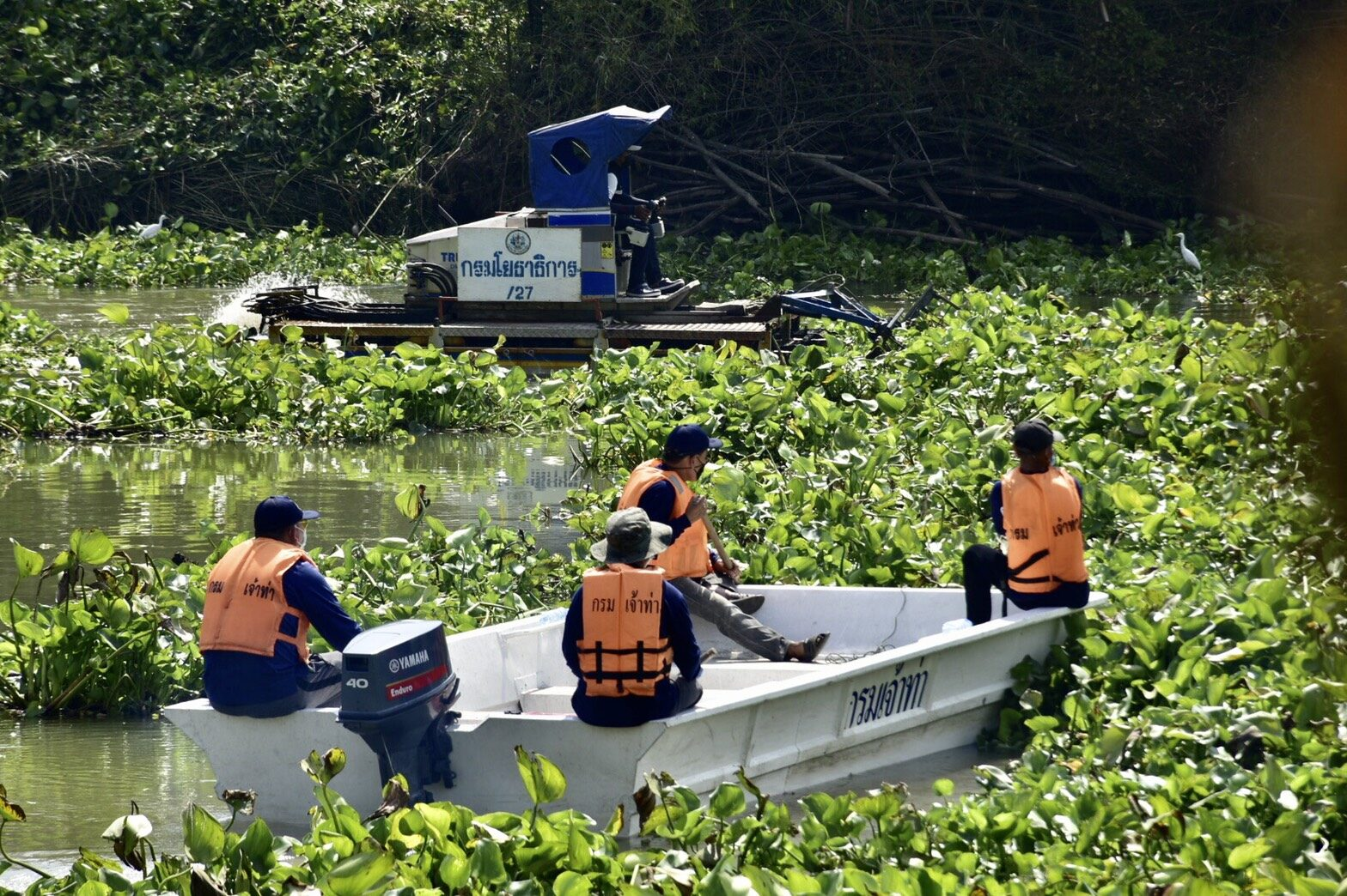 จท.ลงพื้นที่ นำเครื่องจักรเข้าจัดเก็บผักตบชวาออกจากแม่น้ำป่าสัก คาด 3 วันเสร็จ