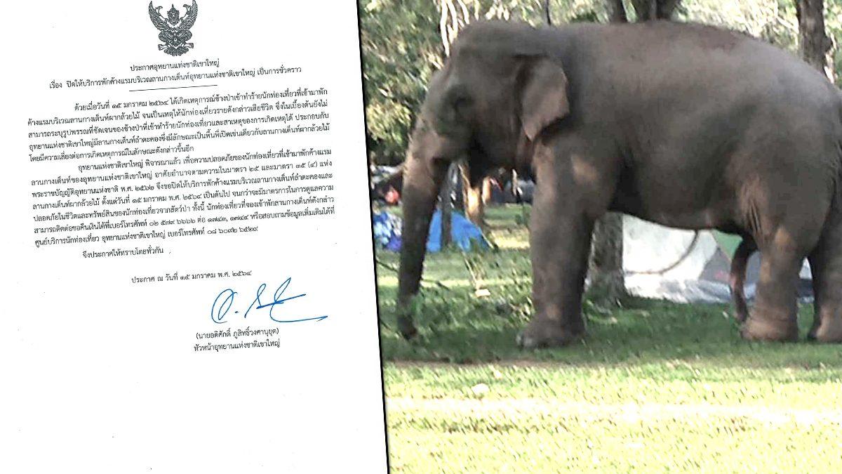 อุทยานแห่งชาติเขาใหญ่ ปิดลานกางเต็นท์ หลังช้างป่าเหยียบนักท่องเที่ยวดับ