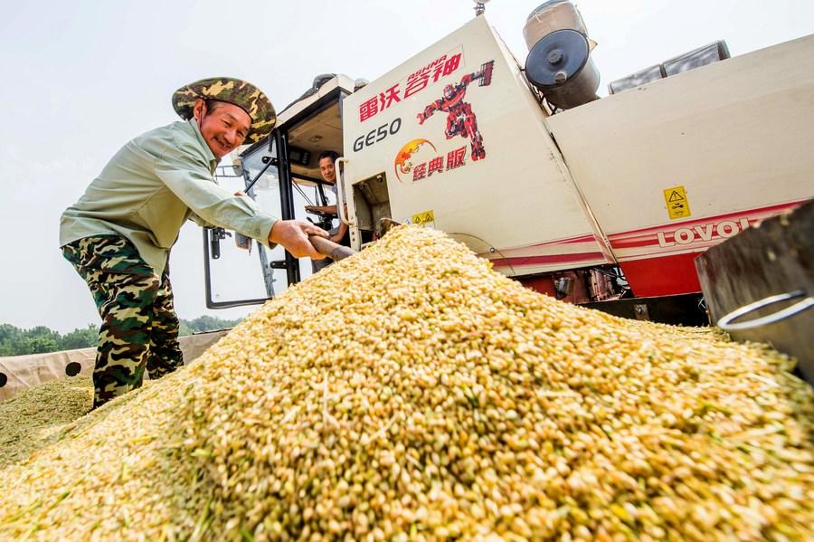 ซานตงส่งออก 'ผลิตผลเกษตร' ทุบสถิติ ครองอันดับ 1 ของจีน