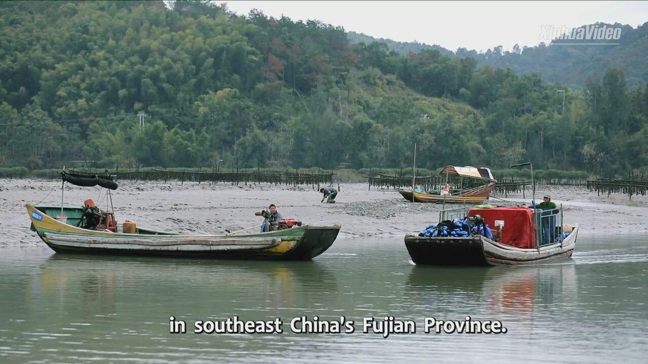 ข้อเสนอจาก 'สีจิ้นผิง' ช่วยชาว 'เรือบ้าน' ในจีน ขึ้นฝั่งพลิกชีวิตสำเร็จ