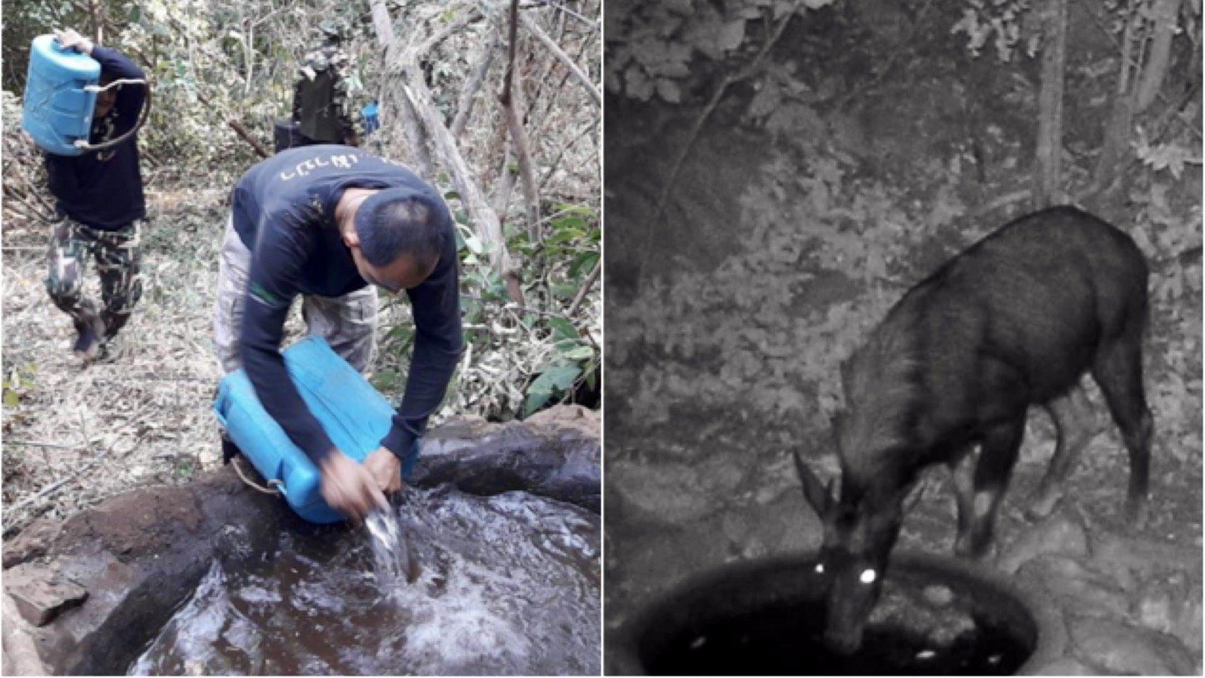 เขตห้ามล่าสัตว์ป่าถ้ำประทุน จ.อุทัยธานี เติมน้ำแก้แล้งให้สัตว์ป่า