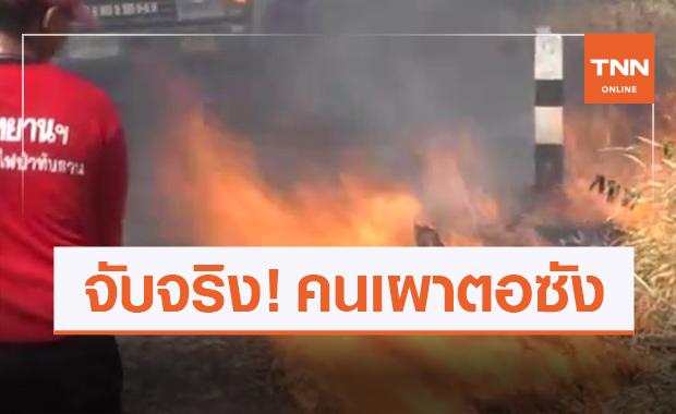 โคราชจับจริง! เผาตอซังข้าวต้นเหตุฝุ่น PM 2.5
