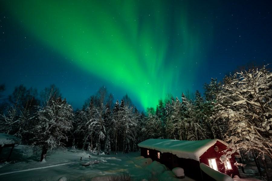 'ห้องพักล่องหน' ของ 'โรงแรมบ้านต้นไม้' กลางป่าสวีเดน