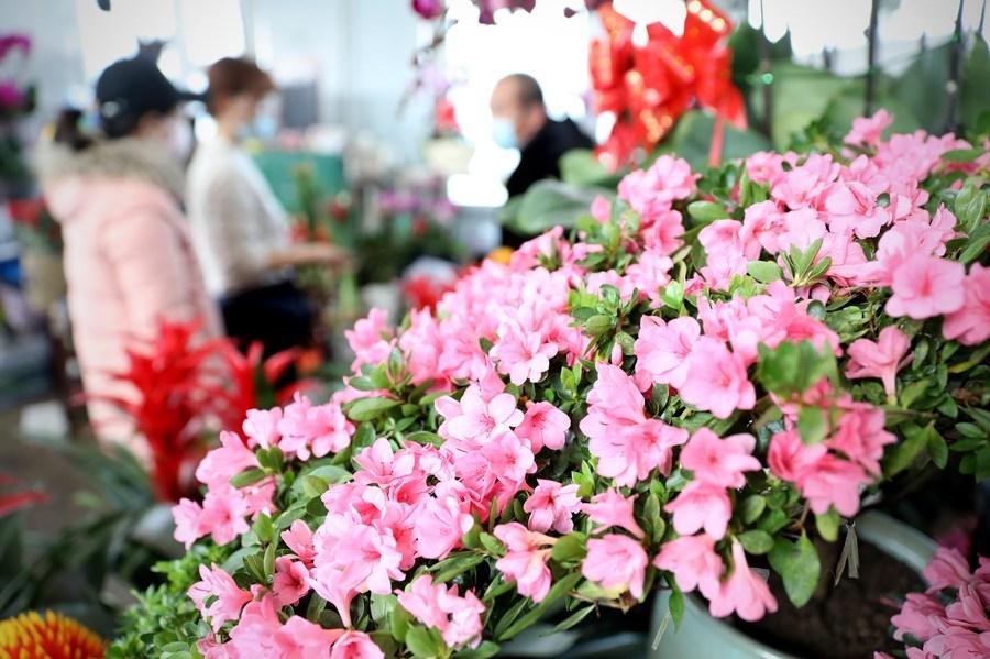 ตลาดดอกไม้สีสันสดใสรับตรุษจีนในเหลียวหนิง