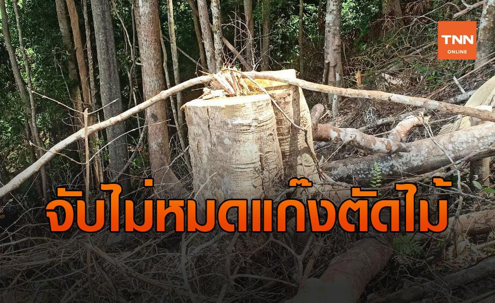 จับไม่หมด! ทำลายป่าเทือกเขาสันกาลาคีรี ชายแดนไทย-มาเลเซีย