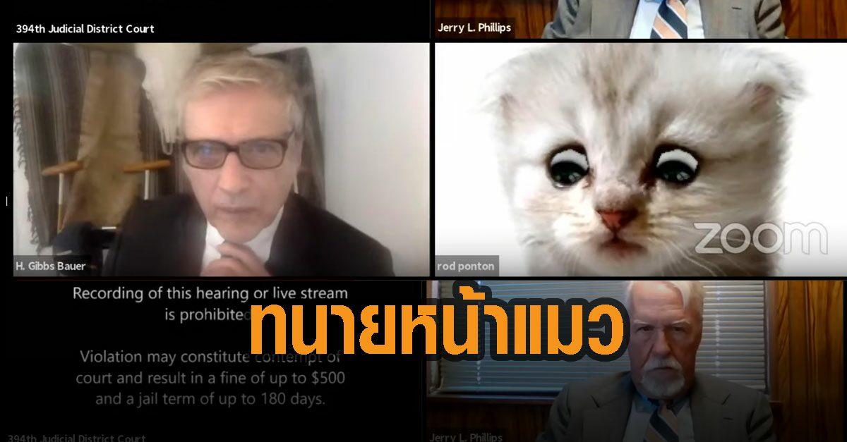 ทนายมะกัน พลาดเปิดฟิลเตอร์หน้าแมว เข้าไต่สวนออนไลน์ สอนวิธีปิดวุ่น