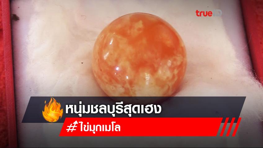 หนุ่มชลบุรีสุดเฮงซื้อหอยให้เมียกินเจอ 'ไข่มุกเมโล' ราคาหลักล้าน